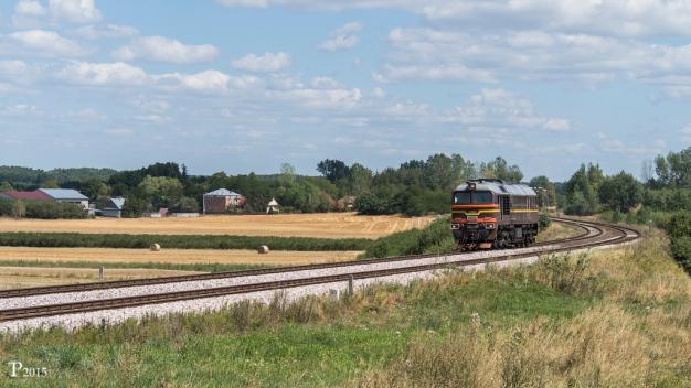 Pociąg przejeżdżający przez Patków