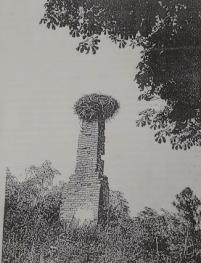 Patków Prusy - pozostałość po dawnym dworku w latach 80 -tych XX wieku