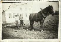 """Orka przed szkołą. Henryk Gmitruk ( trzyma na cepigi pługa) oraz Marian Borysiak, (trzyma za lejce); do pługa zaprzęgnięty jest koń """"Kasztan"""""""