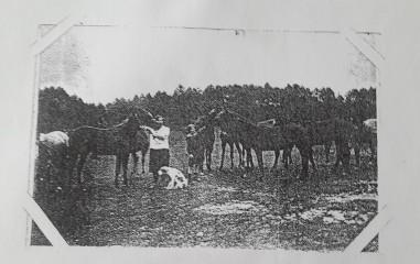 Krystyna Kopciowa i Wanda Kopciówna wśród koni w stadninie w Patkowie.