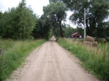 Droga od lasu w stronę wsi