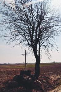 Krzyż polny na Prusach