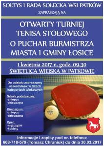 TURNIEJ_PATKOW_2017 (Large)