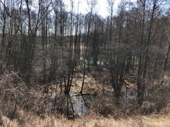 Patków Wiosna 2018 - 24