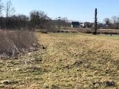 Patków Wiosna 2018 - 29
