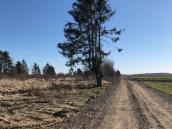 Patków Wiosna 2018 - 39